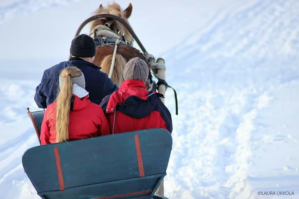 rekiajelu_hevosharrastusta talvella