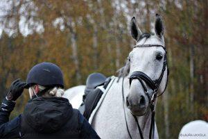 Ratsu ja hevosnainen